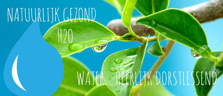 Natuurlijk H2O Waterflesjes bedrukken banner